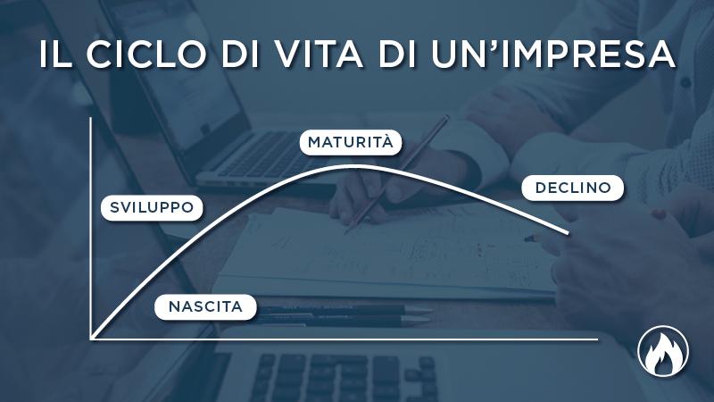 ciclo di vita aziendale curva